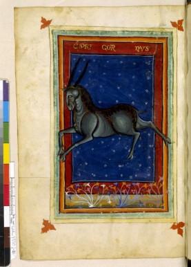 Le même livre de Georgius Zothorus ; ici le Capricorne. On notera la différence detraitement,entre les pages conscrées aux attributsetles pages représentant les signes proprement dit, presque divinisées par le cadre, le fond et la finesse des modelés.