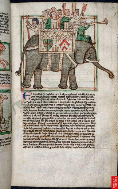 13e. L'intégration de scènes issues du roman d'Alexandre, par exemple les fascinants animaux que sont les éléphants, constitue l'un des grands succès de bibliothèques. Toutes les références, aussi diverse, sont incluses dans une somme thélogique.