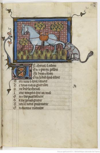Le fameux bestiaire d'amour de Richard de Fournival est là encore un mélangedebestiaire, de fables etde légendes. La maîtruisedes figures et le jeu avec les cadres est ici manifeste.