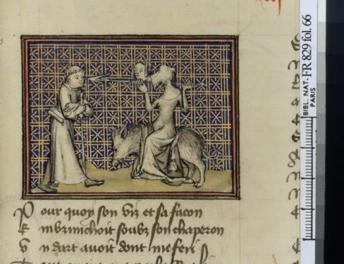 Dans un style très proche, la réponse polémique, chrétienne et morale de Guillaume de Diguleville au roman de la rose, se mettant en scène face à Vénus tentatrice...