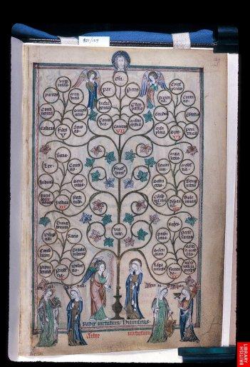 L'arbre des vertus ; le modèle de pen,sée en arborescence est fameux et opère un contyrpoint dynamique aux organisations symétriques. Psautier du 14ème.