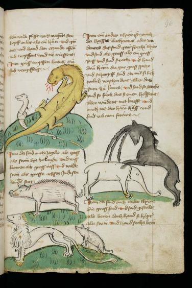 Dans la suite des voyages de Mandeville, les bestiaires étranges.