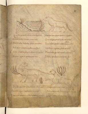Fabliau du 9ème siècle ; grenouille et renard!!. On notera que l'écriture, avant la période gothique est très lisible.