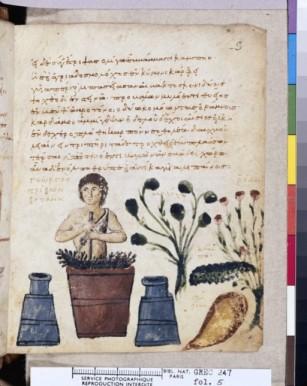 Manuscrit turc du 9ème siècle, en grec ; paysan préparant un onguent contre les vipères!!Extrait d'un livre mêlant légendes, herbier, bestiaire et astronomie