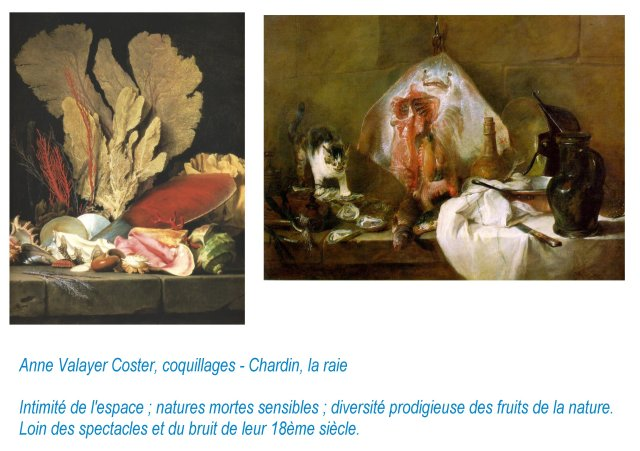 f Anne-Vallayer-Coster, Chardin - Intimités