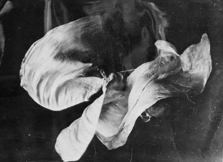 """""""la"""" Loie Füller...on comprend l'intérête de Rodin pour cette artiste, qui sculpte la umière par les ondulations des voiles prolongeant ses membres. Seule la photo, encore peut fixer chaque figure, transformant ces instants en véritables sculptures. Ici encore il est question de fluidité."""
